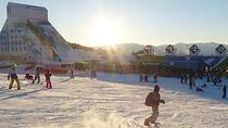 *【周辺】鷲ヶ岳スキー場(車で約15分)