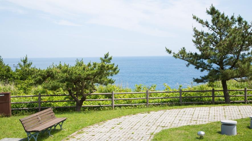 青い海を眺めながらお散歩もいいですね♪