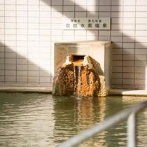 【1Fとどぽっくる】美人の湯とも呼ばれる炭酸水素塩泉