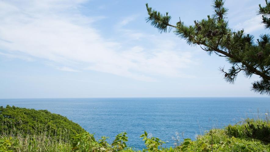 地平線まで真っ青な海は心を癒してくれること間違いなし!