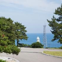 ホテル周辺には、海を眺めながらお散歩できるところがたくさんあります!