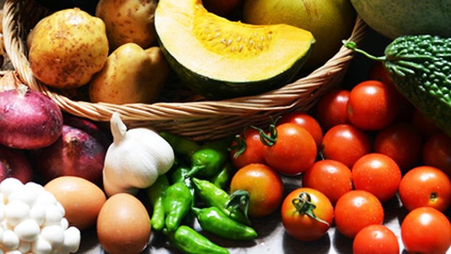 夏の新鮮お野菜!安心安全な自然のお野菜です♪取れる野菜は天候により変わります