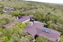 緑の森に囲まれたホテル