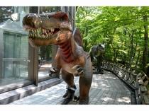 クアハウスをのぞき込む恐竜!