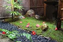 弦月の坪庭