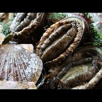 ■【お食事・海の幸】獲れたての新鮮なあわび