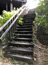 訳アリ!【森の中のペット部屋】入口階段30段(通常のペット部屋にはございません。)