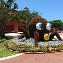 *沖縄海洋博公園/名物フラワーアート「花タコ」