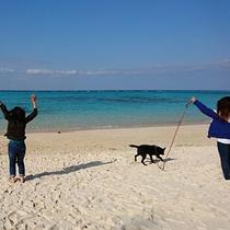 *サダ浜/車で15分 透明度が高くキレイで静かなビーチ 観光客も少なくのんびりできます。