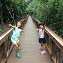 沖縄の自然へようこそ