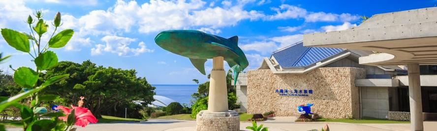 美ら海水族館 スナドゥンから約1時間15分♪