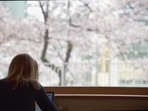 リビング&キッチン【春】
