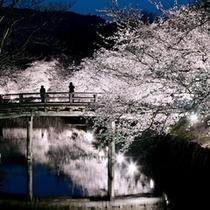 【松本城②】春の松本城②