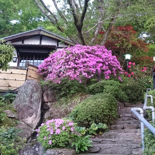 【外観】玄関へとづづく石段。季節の花々で彩ります。