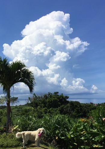 大きな雲の下