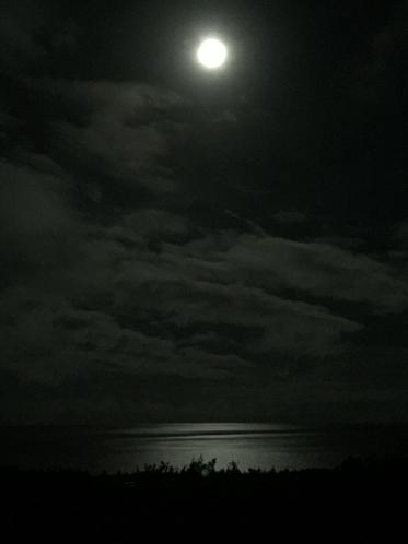海の上に月明かりの道が…