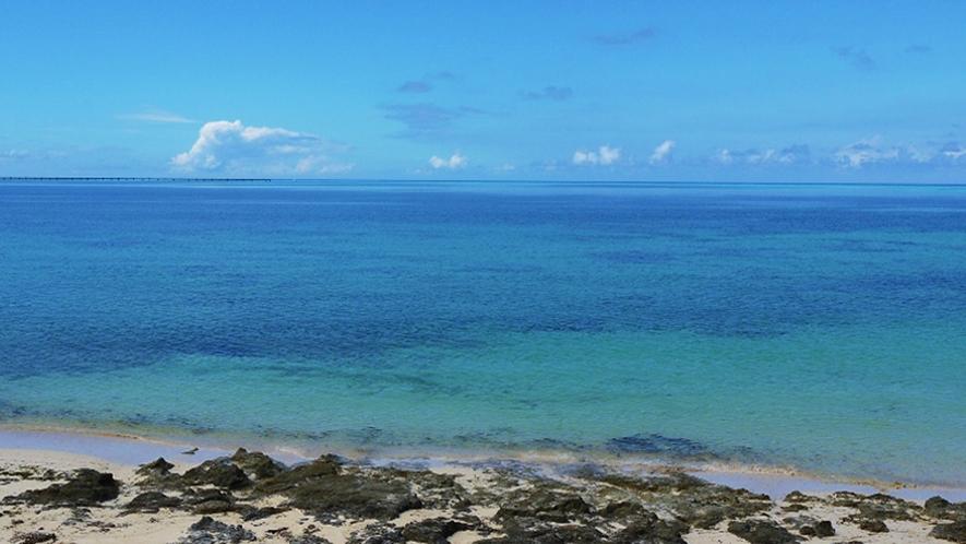 【周辺】佐和田東の浜。どこまでも続くきれいな海は絶景です!
