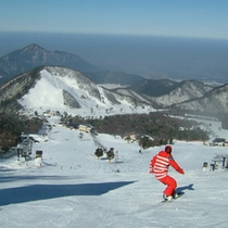 ■スキーを楽しむなら大山ホワイトパレス■