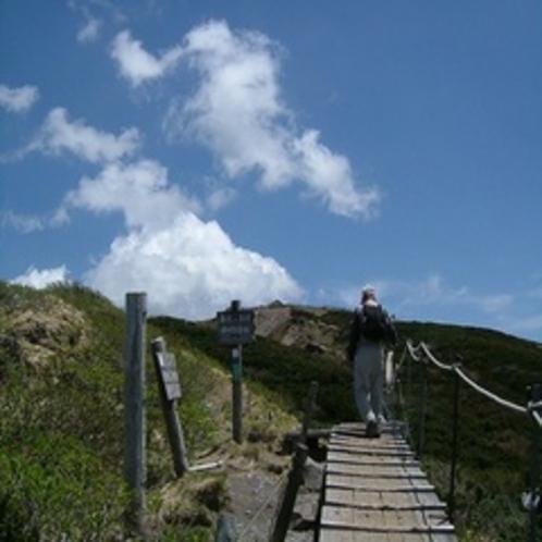 ■初夏の登山道!頂上が見えてきた!■