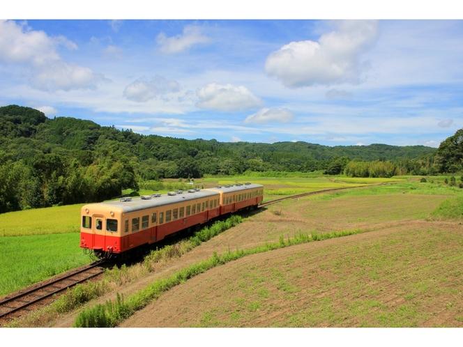 【小湊鉄道】美しい夏の田園風景