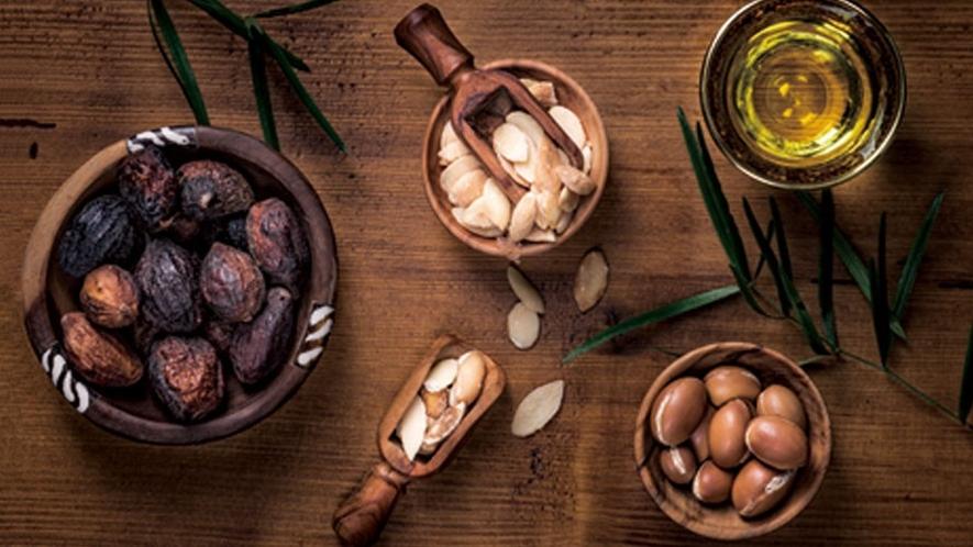 【TAYIV-タイヴ-】モロッコの希少植物油 アルガンオイルをふんだんに使用。