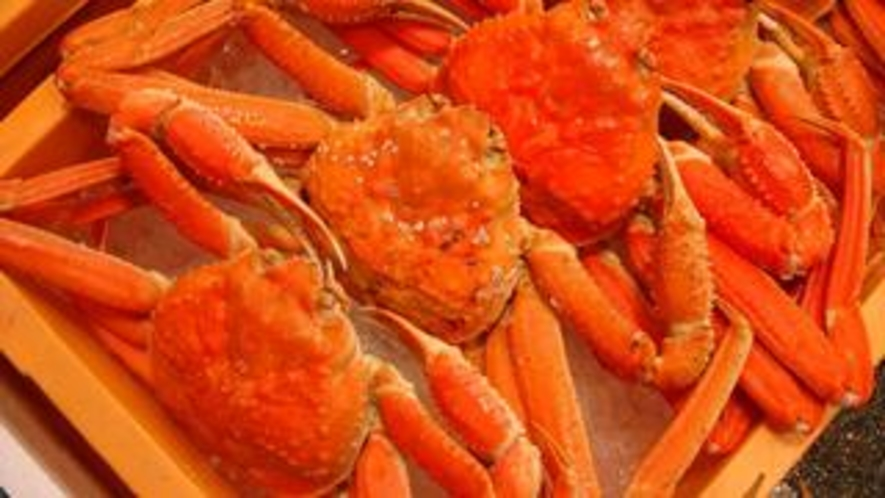 ゆで「ずわい蟹」
