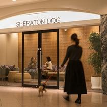 【ペットリラクゼーションハウス シェラトンドッグ】神戸ベイシェラトンホテル隣接のペットホテル