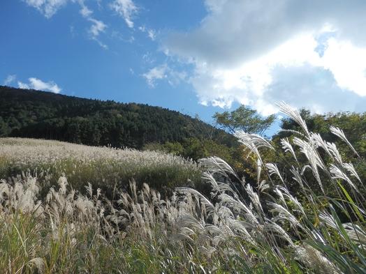 『温泉卓球』と季節彩るバイキング2食付!仙石原にごり湯と名物バイキングと卓球で箱根旅行満喫!