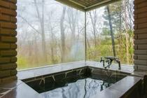 リゾートハウスB_浴室