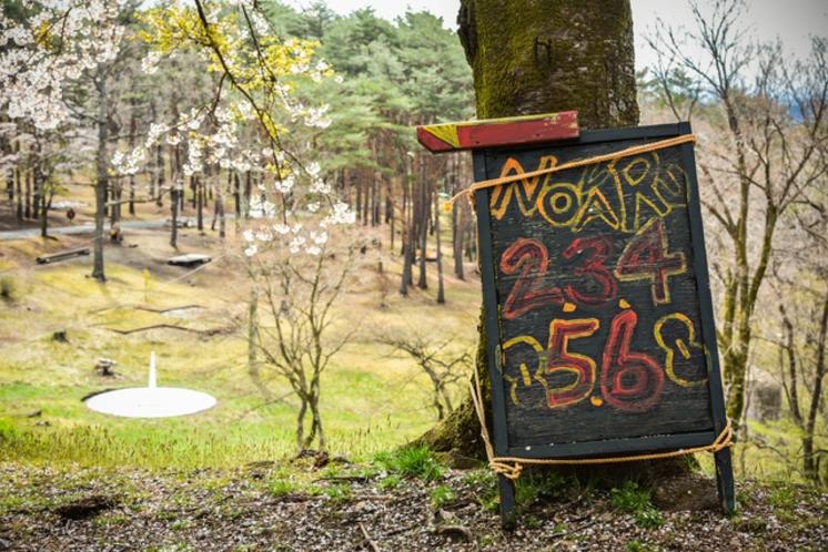 那須の森の空中アスレチック「NOZARU」④