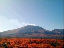秋 パノラマテラスから望む浅間山の紅葉