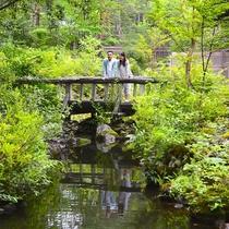 ホテル内の北軽井沢高原の四季を感じられる中庭で散策♪