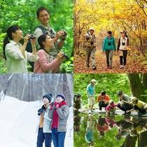 【軽井沢・野鳥の森で自然体験】 不思議に出会えるネイチャーガイド付きツアー&バイキングプラン♪