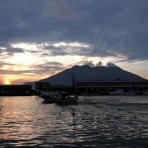 夏の日の出、桜島と魚市場       (鹿児島市中央卸売市場魚類市場)