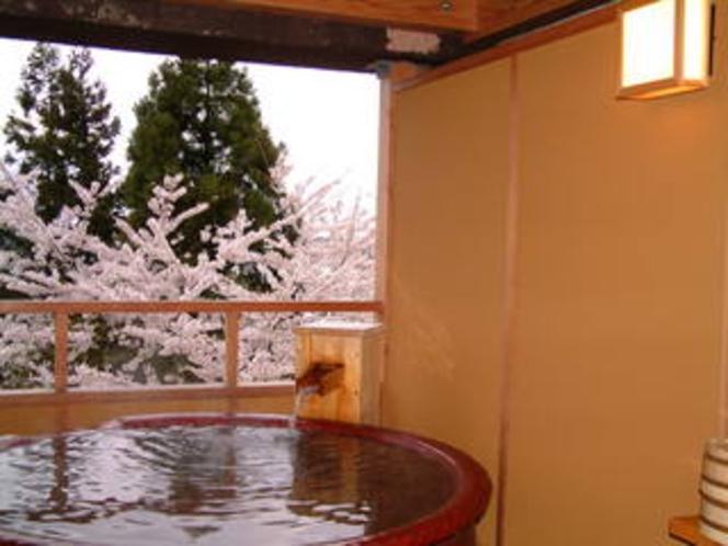 桜の季節の貸切露天風呂
