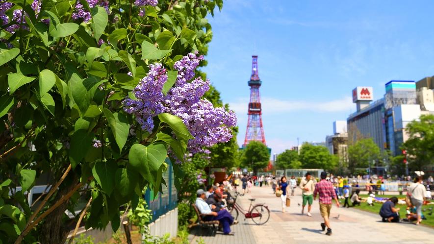 【大通公園】春
