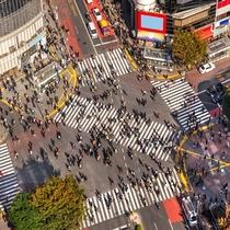 渋谷へはバスで1本。アクセスに便利です。