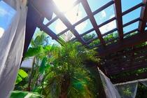 ガーデンガゼボから眺める陽射し