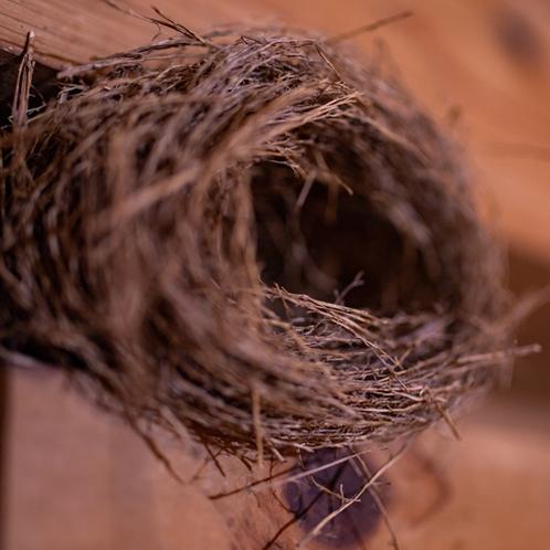 ■つばめの巣のオブジェ