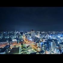 客室からの夜景Ⅳ