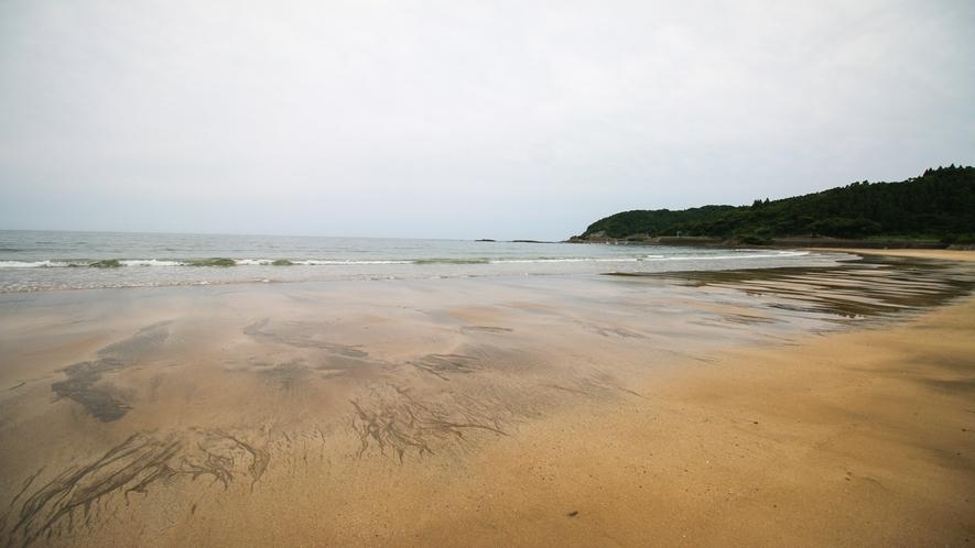 *アクティビティ(富土海水浴場)7