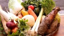 野菜の美味しさを感じるのは、肥えた土壌で作った本物の野菜だから。野菜の味が濃い!