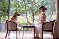 客室の窓辺からは四季折々の自然の風景をお楽しみいただけます