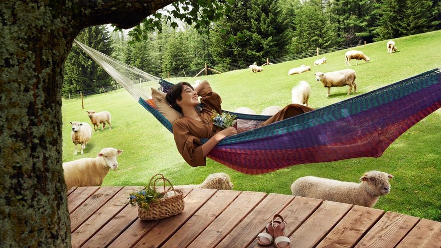 【ファーム星野】羊とお昼寝ハンモック