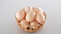 半澤鶏卵・やさしいたまご