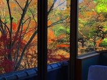 お部屋からの秋の眺め