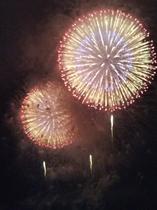 三崎公園から見た花火大会