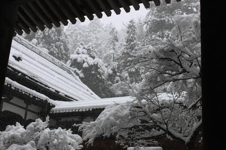 雪の降り積もる永平寺。荘厳な雰囲気で心落ち着ける場所です。