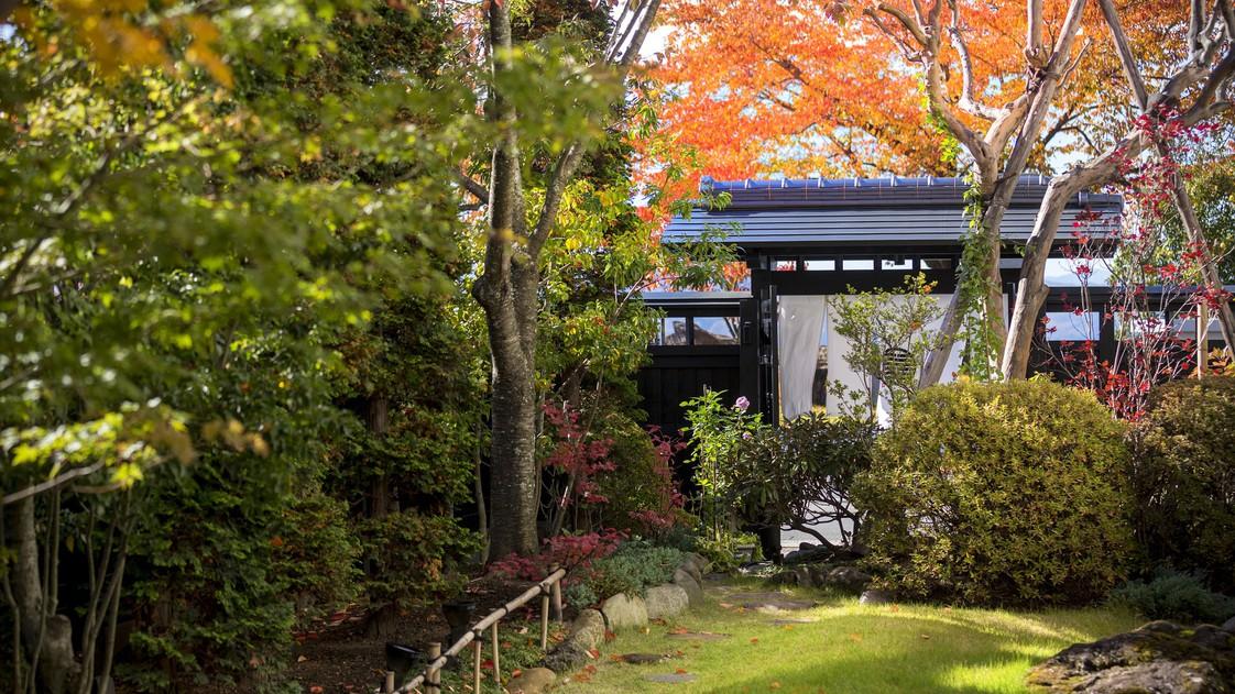 【秋の庭園】色鮮やかな紅葉 見頃は例年11月上旬頃から