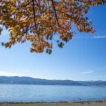 ■諏訪湖の紅葉